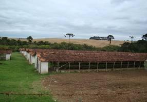 Fazenda/Sítio à venda