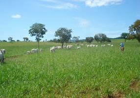 Fazenda/Sítio com 3 Quartos à venda, 23435280m²