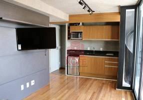 Apartamento com 1 Quarto para alugar, 32m²