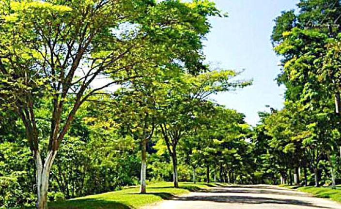 Lote/Terreno à Venda, 1000 m² por R$ 130.000 Rua Pitangueiras, 400 - Capital Ville I, Cajamar - SP